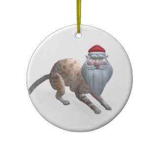 santa_cat_christmas_tree_ornaments-rcbf1ca2a94f44eb9bc02fbebe06e9df4_x7sjo_8byvr_324
