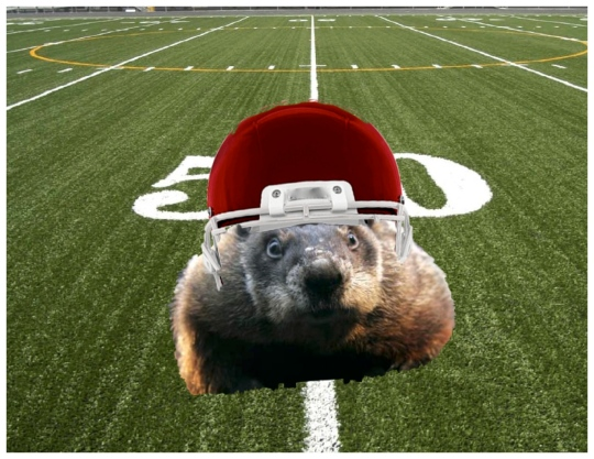 If Punxsutawney Phil played football