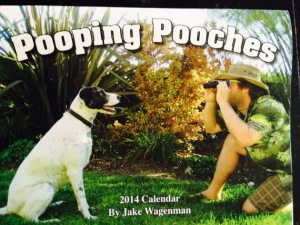 Pooping Pooches
