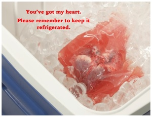 Background image from heartinternational.transmedics.com