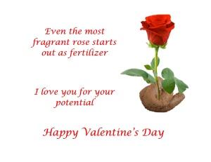 Valentine's Day Cards - Rose Poop