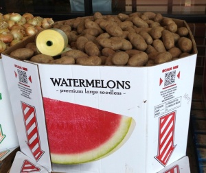 Rare fancy Idaho watermelons