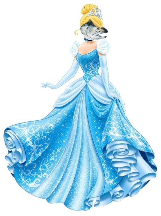 Salmonella - Cinderella's distant cousin