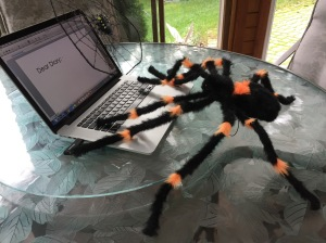 Spiders are extremely proficient on the web