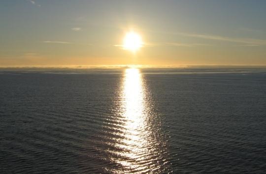 Tis the Sea Sun